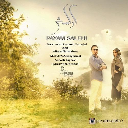 Payam Salehi - Aramesh