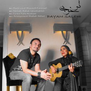 Payam Salehi To Khoubi 300x300 - دانلود آهنگ پیام صالحی به نام تو خوبی