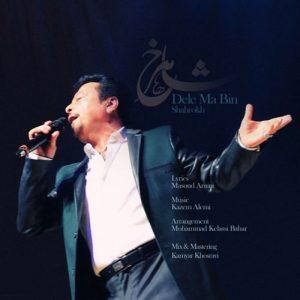 Shahrokh Dele Ma Bin 300x300 - دانلود آهنگ شاهرخ به نام دل ما بین