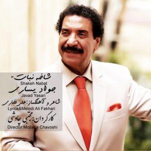 Javad Yasari Shakeh Nabat 300x300 - دانلود آهنگ جدید جواد یساری به نام شاخه نبات