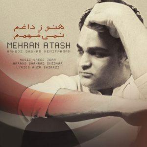 Mehran Atash Hanooz Dagham Nemifahmam 300x300 - دانلود آهنگ جدید مهران آتش به نام هنوز داغم نمیفهمم
