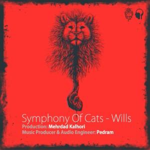 Symphony Of Cats Will 300x300 - وصیت نامه از یاس
