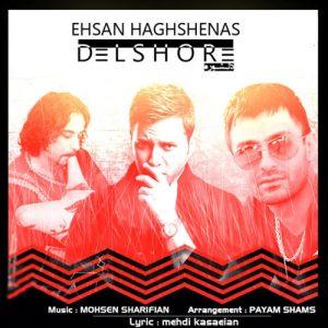Ehsan Haghshenas Delshooreh 300x300 - دانلود آهنگ احسان حق شناس به نام دلشوره