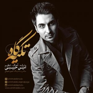 Amin Habibi Tekyegah 300x300 - دانلود آهنگ جدید امین حبیبی به نام تکیه گاه