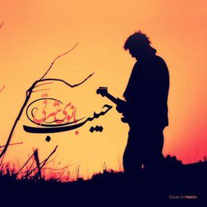 Habib Banooye Sharghi 300x300 - دانلود آهنگ جدید حبیب به نام بانوی شرقی