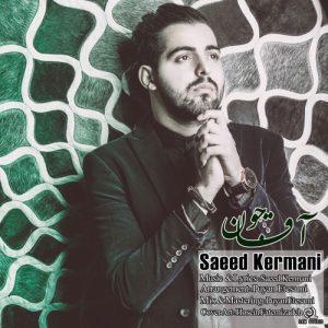 Saeed Kermani Agha Joon 300x300 - دانلود آهنگ جدید سعید کرمانی به نام آقا جون