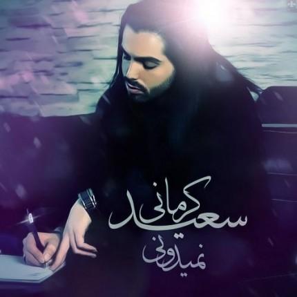 دانلود آهنگ سعید کرمانی به نام نمیدونی