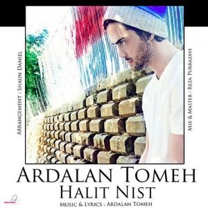 Ardalan Tomeh Halit Nist 300x300 - دانلود آهنگ جدید بسیار زیبای اردلان طعمه به نام حالیت نیست