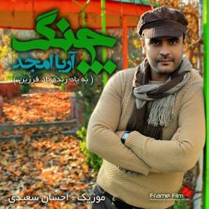 Arya Amjad Chang 300x300 - دانلود آهنگ جدید آریا امجد به نام چنگ