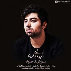 Soroush Dadkhah Tanhaei Bade 300x300 - دانلود آهنگ جدید سروش دادخواه به نام تنهایی بده