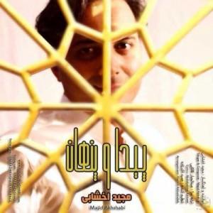 Majid Akhshabi Peyda O Penhan 300x300 - دانلود آهنگ جدید مجید اخشابی به نام پیدا و پنهان