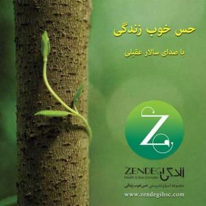 Salar Aghili Hesse Khoobe Zendegi 300x300 - دانلود آهنگ جدید سالار عقیلی به نام حس خوب زندگی