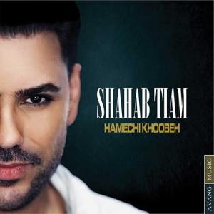 Shahab Tiam Hamechi Khobeh 300x300 - دانلود آهنگ جدید شهاب تیام به نام همه چی خوبه