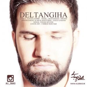Ali Zibaei Deltangiha 300x300 - دانلود آهنگ جدید علی زیبایی به نام دلتنگیها