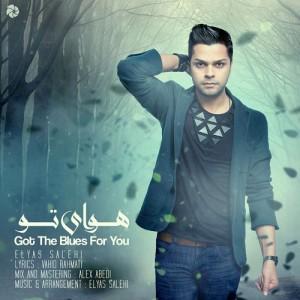 Elyas Salehi Havaye To 300x300 - دانلود آهنگ جدید الیاس صالحی به نام هوای تو