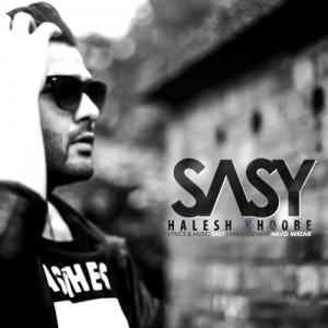 Sasy Mankan Halesh Khoobe 300x300 - دانلود آهنگ جدید ساسی مانکن به نام حالش خوبه