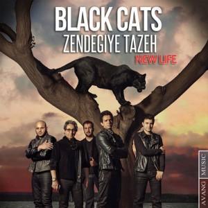 Black Cats Zendegiye Tazeh 300x300 - دانلود آهنگ جدید بلک کتس به نام زندگی تازه