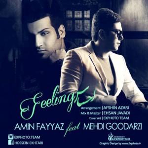 Amin Fayyaz Mehdi Goodarzi Ehsas 300x300 - دانلود آهنگ جدید امین فیاض به همراهی مهدی گودرزی به نام احساس