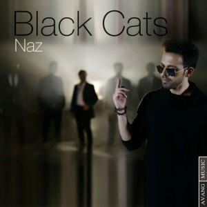 Black Cats Naz 300x300 - دانلود آهنگ جدید بلک کتز به نام ناز