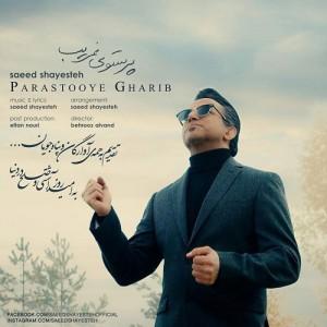Saeed Shayesteh Parastooye Gharib 300x300 - دانلود آهنگ جدید سعید شایسته به نام پرستوی غریب