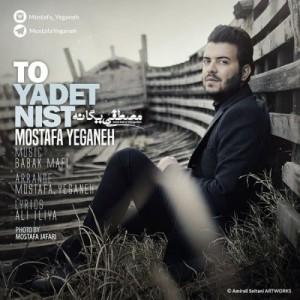 Mostafa Yeganeh To Yadet Nist 300x300 - دانلود آهنگ جدید مصطفی یگانه به نام تو یادت نیست