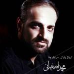 دانلود آهنگ جدید محمد اصفهانی به نام وفا