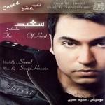 دانلود آلبوم جدید سعید ملکی به نام تب عشق