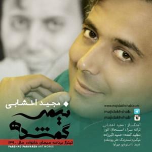 Majid Akhshabi Nimeye Gomshodeh 300x300 - دانلود آهنگ جدید مجید اخشابی به نام نیمه گمشده