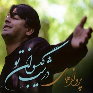 Parvaz Homay Dar Shab Gisovan To 300x300 - دانلود آلبوم پرواز همای به نام در شب گیسوان تو