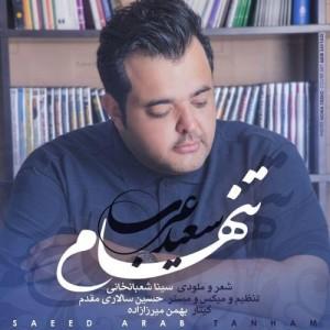Saeed Arab Tanham 300x300 - دانلود آهنگ جدید سعید عرب به نام تنهام