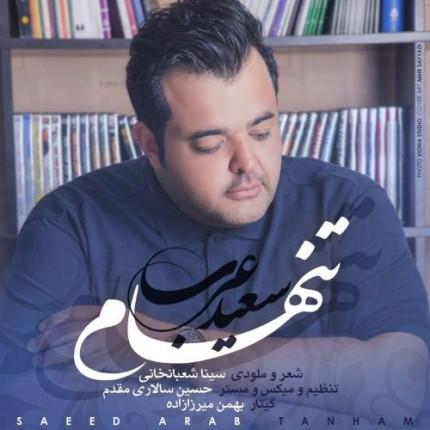 دانلود آهنگ جدید سعید عرب به نام تنهام