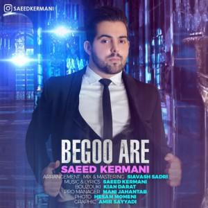 Saeed Kermani Begoo Are 300x300 - دانلود آهنگ جدید سعید کرمانی به نام بگو آره