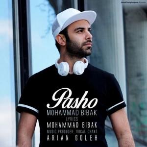 Mohammad Bibak Pasho 300x300 - دانلود آهنگ جدید محمد بی باک به نام پاشو