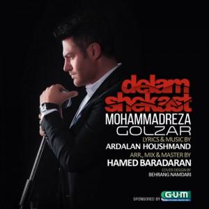 Mohammadreza Golzar Delam Shekast 300x300 - دانلود آهنگ جدید محمدرضا گلزار به نام دلم شکست