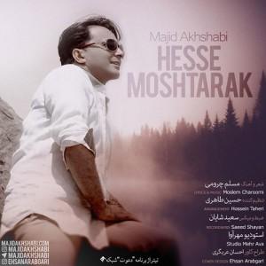 Majid Akhshabi Hesse Moshtarak 300x300 - دانلود آهنگ جدید مجید اخشابی به نام حس مشترک