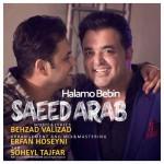 دانلود آهنگ جدید سعید عرب به نام حالمو ببین