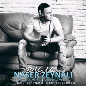 Naser Zeynali Pat Vay Misam 300x300 - پات وایمیسم از ناصر زینعلی