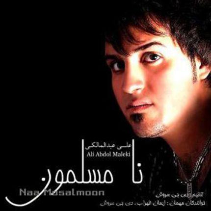 دانلود آلبوم علی عبدالمالکی به نام نامسلمون