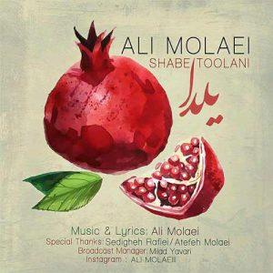 Ali Molaei Shabe Toolani 300x300 - دانلود آهنگ جدید علی مولایی به نام شب طولانی