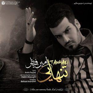 Amin Fayyaz Tanhaei 300x300 - دانلود آهنگ جدید امین فیاض به نام تنهایی