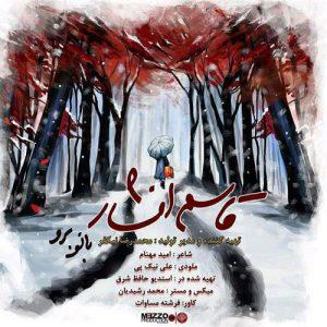 Ghasem Afshar Banoo Boro 300x300 - دانلود آهنگ جدید قاسم افشار به نام بانو برو