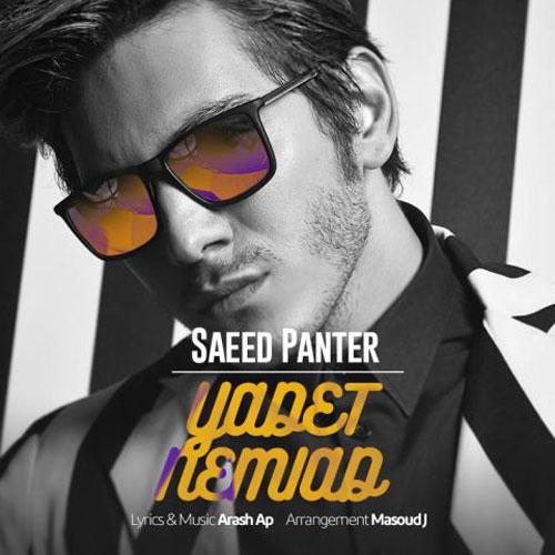 Saeed Panter Yadet Nemiad - دانلود آهنگ جدید سعید پانتر به نام یادت نمیاد