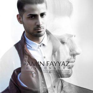 Amin Fayyaz Divoonatam 300x300 - دانلود آهنگ جدید امین فیاض به نام دیوونتم
