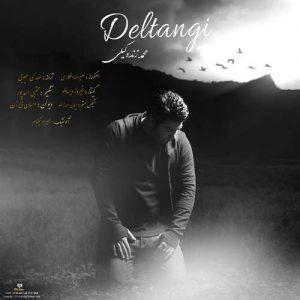 Mohammad Zand Vakili Deltangi 300x300 - دانلود آهنگ جدید محمد زند وکیلی به نام دلتنگی