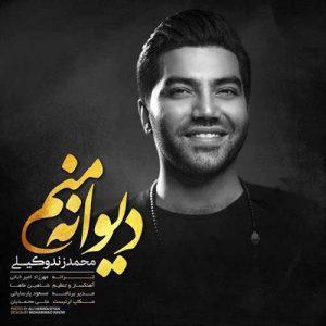 Mohammad Zand Vakili Divane Manam 300x300 - دانلود آهنگ جدید محمد زندوکیلی به نام دیوانه منم