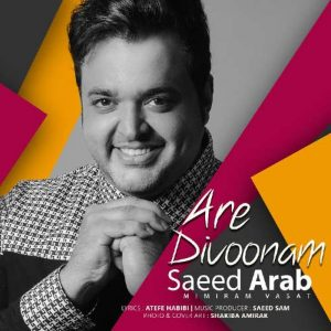 Saeed Arab Are Divoonam 300x300 - دانلود آهنگ جدید سعید عرب به نام آره دیوونم