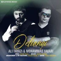دانلود آهنگ جدید علی فیاضی و محمد یاوری به نام دلتنگی