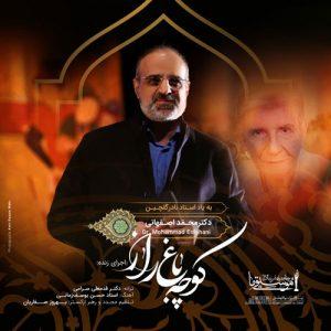 Mohammad Esfahani Koocheh Bagh e Raaz Live 300x300 - دانلود آهنگ جدید محمد اصفهانی به نام کوچه باغ راز