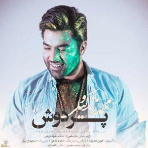 Mohammad Zand Vakili Pardosh 300x300 - دانلود آهنگ جدید محمد زند وکیلی به نام پردوش