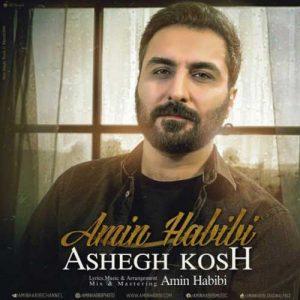 Amin Habibi Ashegh Kosh 300x300 - دانلود آهنگ جدید امین حبیبی به نام عاشق کش